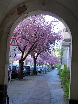 The-Hidden-Treasures-of-Friedenau